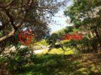 洪都拉斯海湾群岛瓜納哈島的房产,La Giralda,编号34628226