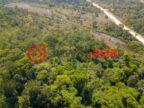 伯利兹斯坦克里克丹格里加的房产,Wildlife Estates Lot 37,编号36815045