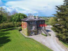 爱尔兰莱伊什郡的房产