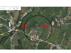 居外网在售葡萄牙EUR 220,000总占地17000平方米的土地
