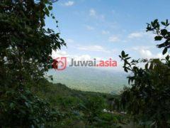 居外网在售牙买加Red Hills的房产USD 40,189