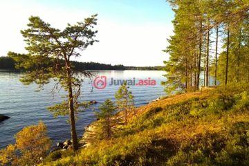 居外网在售芬兰KajaaniEUR 185,000总占地9400平方米的土地