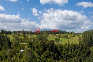 居外网在售澳大利亚USD 16,880,000的土地