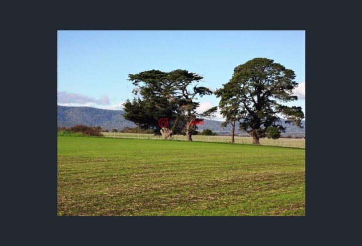 U乐国际娱乐塔斯马尼亚White Hills的房产,195 White Hills Road,编号34515636