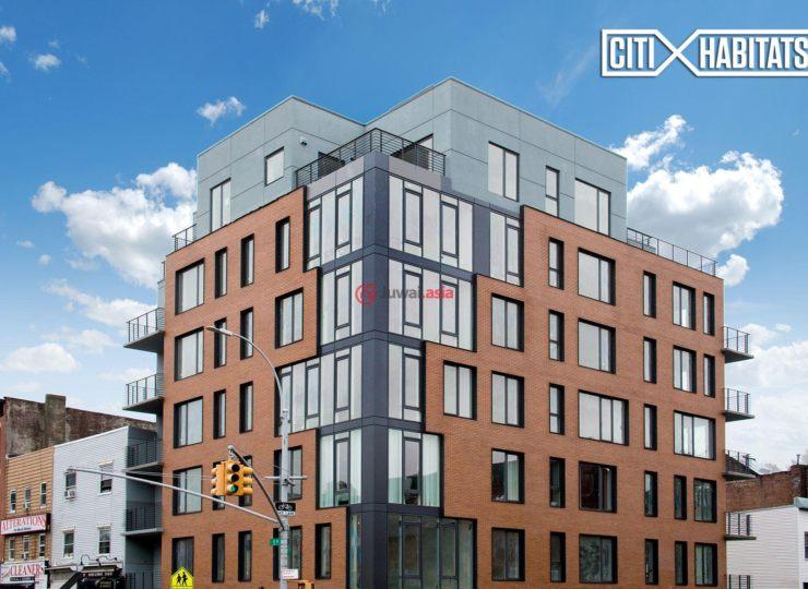 美国纽约州的新建房产,236 17th Street,编号37177727