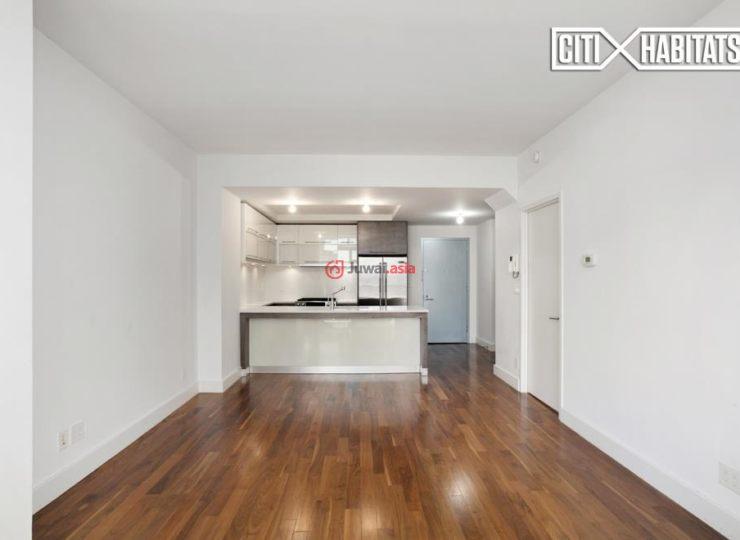 美国纽约州的新建房产,214 North 11th Street,编号37294087